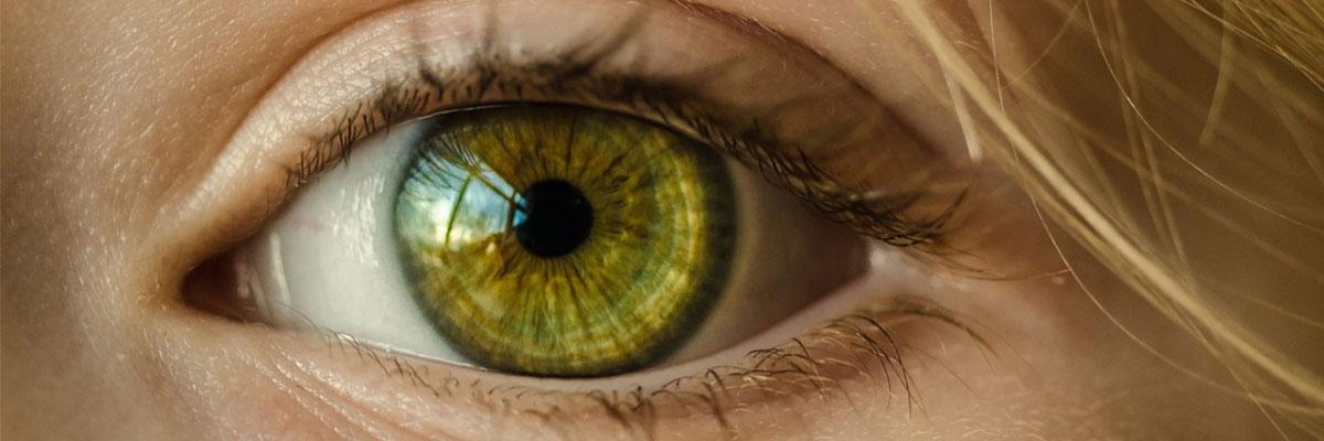 طب العيون