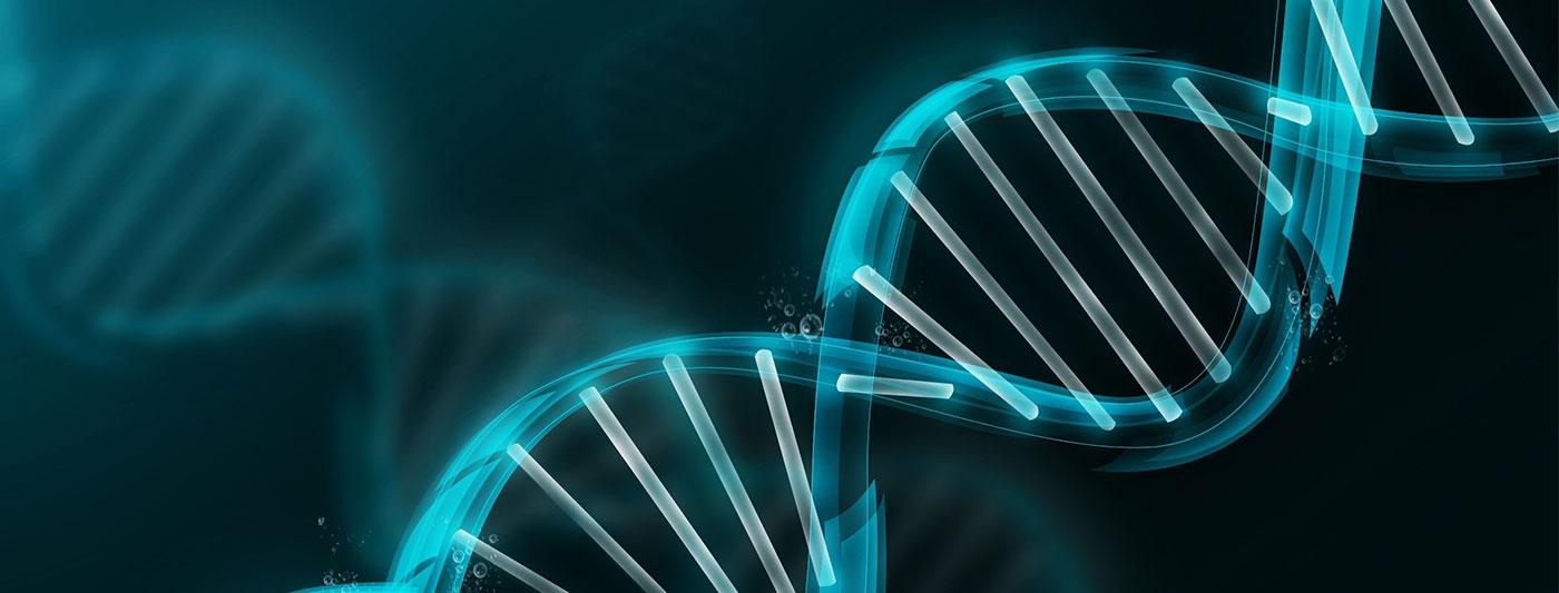 التشخيص الوراثي قبل الزرع (PGD)